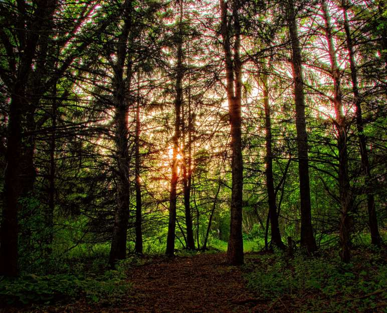 Scenic Rochester, MN - Beautiful by Nature Video